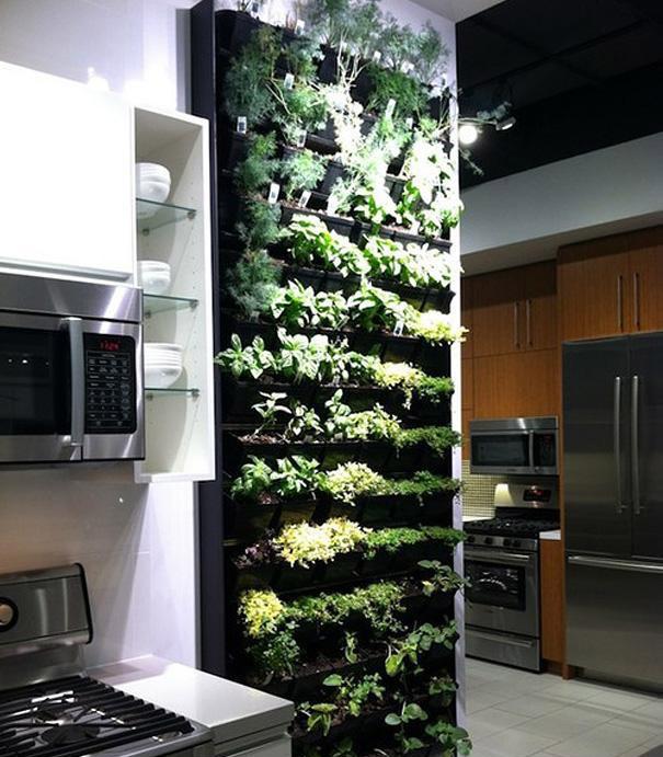 Jardín de hierbas vertical en la cocina