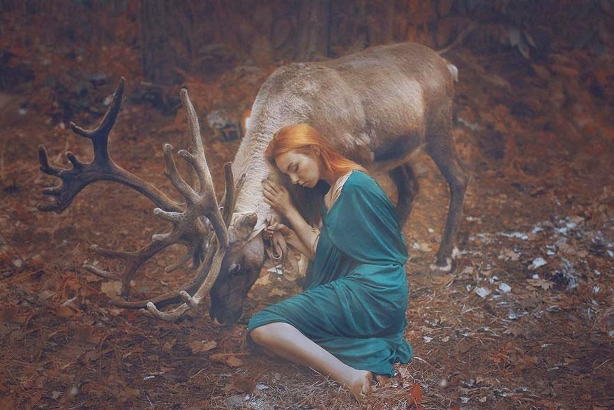 animales15