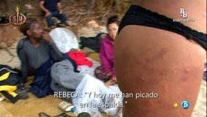 rebeca-mosquitos4
