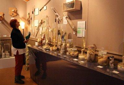 museo-penes2