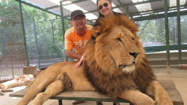 zoologico-deja-entrar-jaula-leones