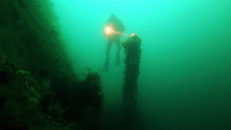 bosque subacuático 1