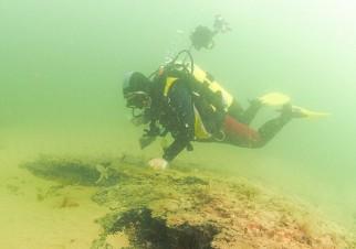 bosque subacuático 4