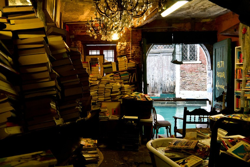biblioteca (11)