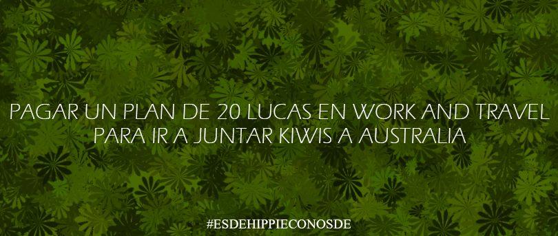 hippie con osde13