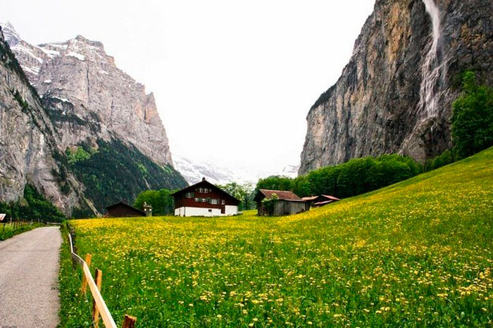 Suiza 5