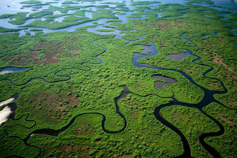 10-lugares-planos-del-mundo-everglades