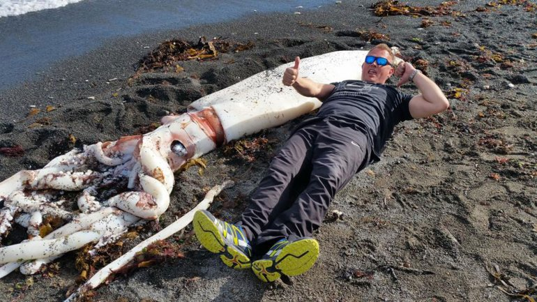 calamar gigante 03