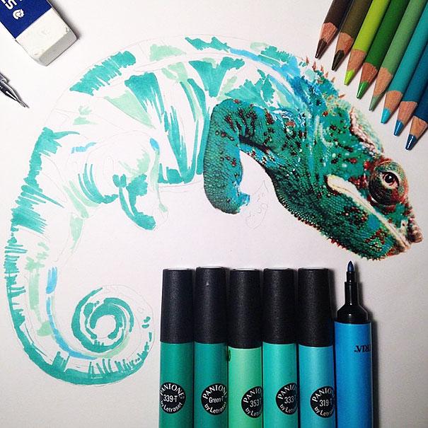 camaleon-dibujo