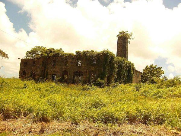 lugares reclamados por la naturaleza (3)
