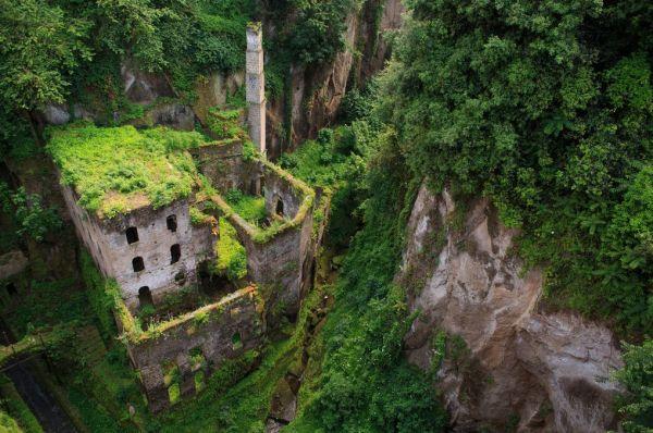 lugares reclamados por la naturaleza (4)