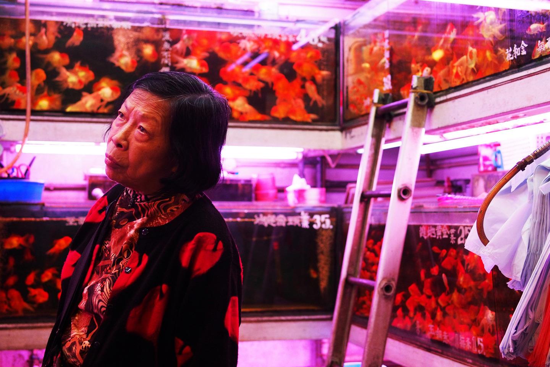 mercado peces hong Kong (7)