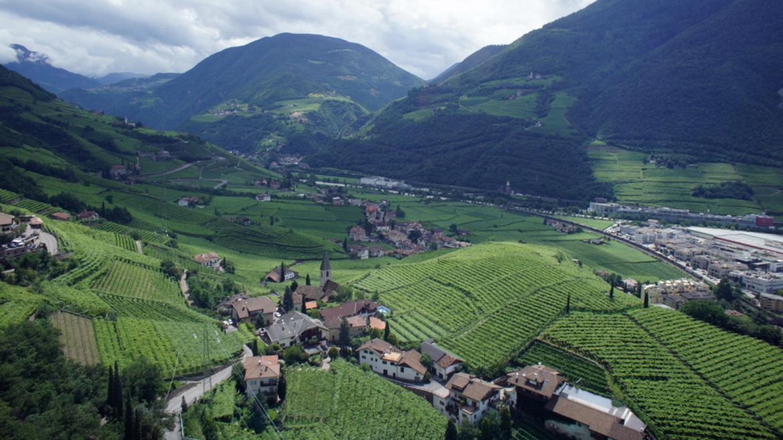 Bolzano 1