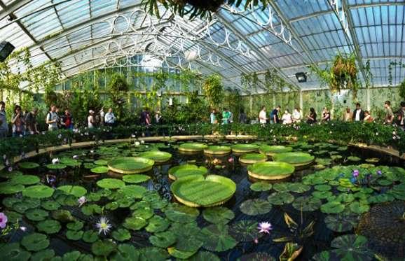 Jardín Botánico de Kew, Inglaterra