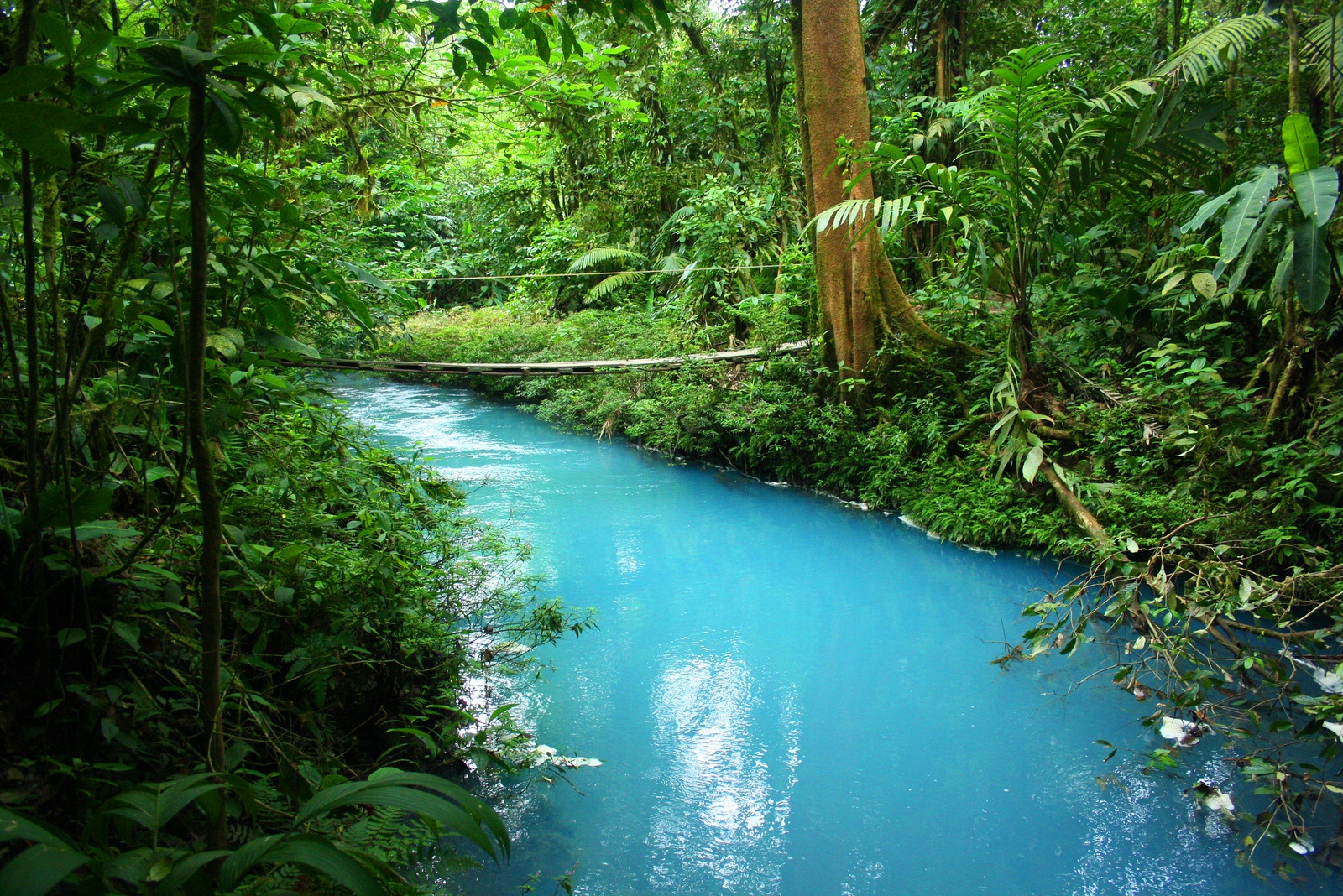 rio celeste 2