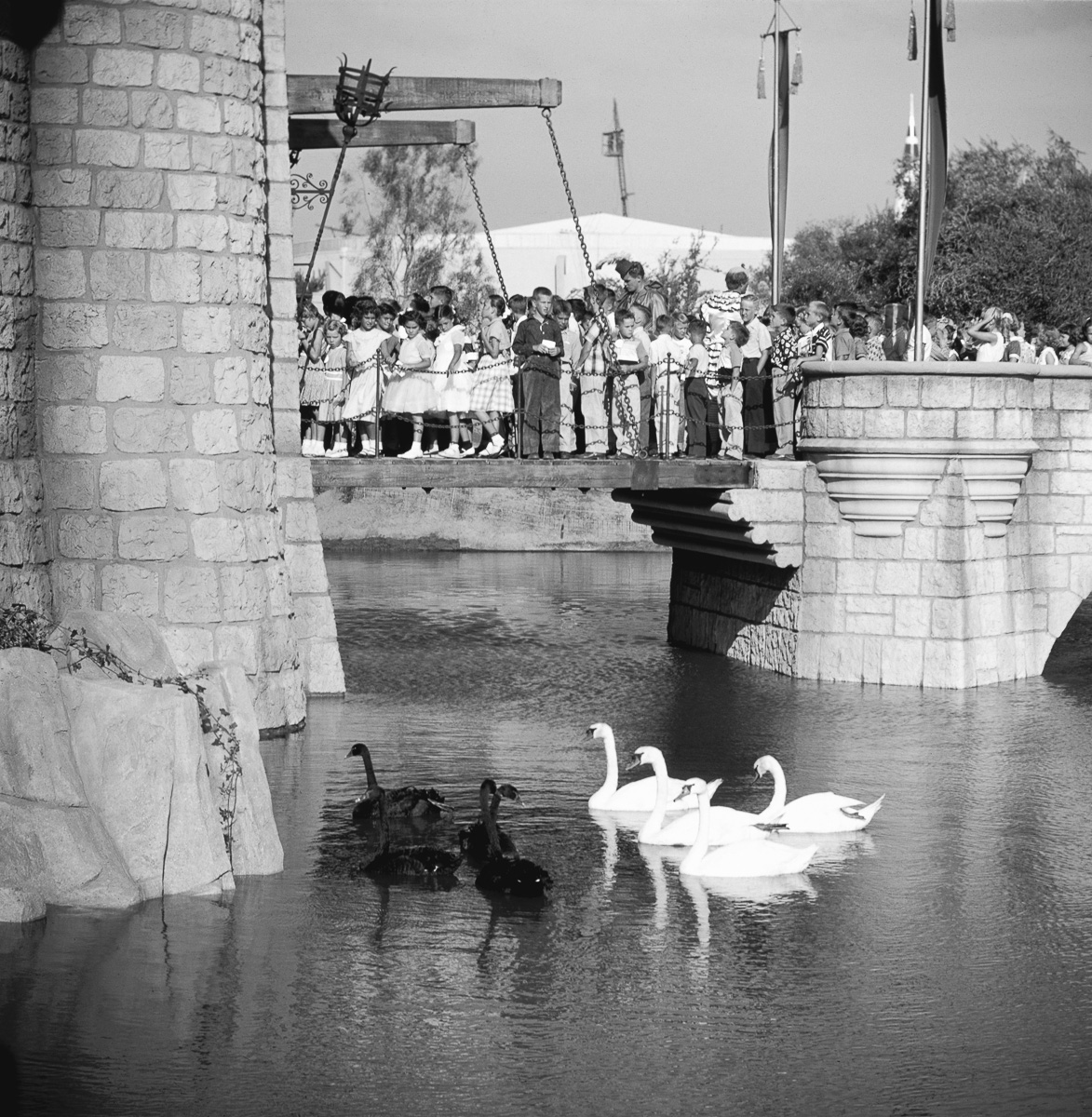 Children At Disneyland Grand Opening