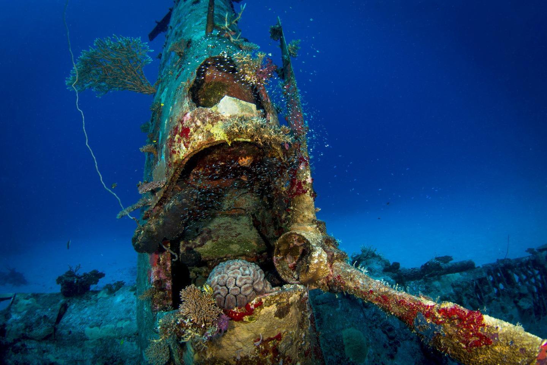 Avion Segunda Guerra Mundial bajo el agua 8