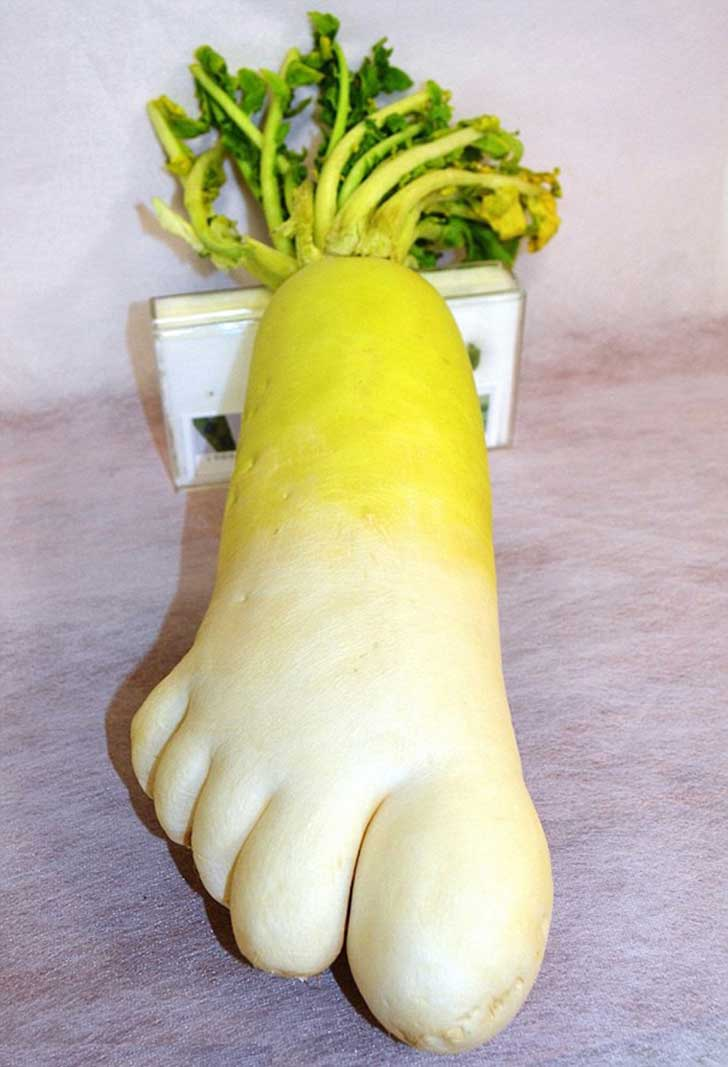 frutas-verdudaras-formas-extrañas8