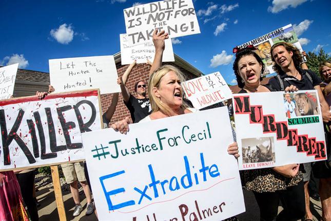 Protestas frente al consultorio de Palmer