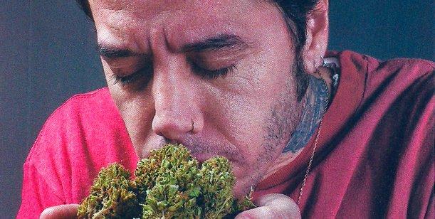 Sebastián-Ortega-marihuana