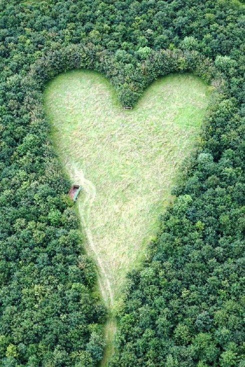corazon-gigante-3