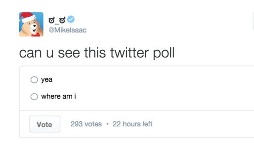poll encuesta twitter