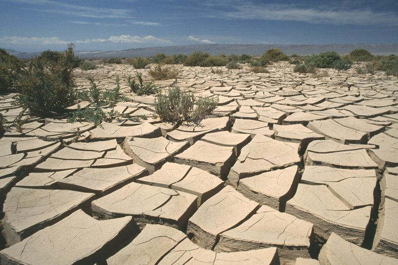 CHILE Atacama Desert San Pedro de Atacama. Landscape of mud cracked earth.