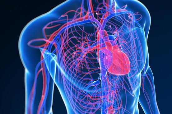 corazon ataque cardiaco