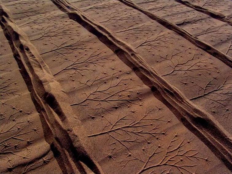 impresiones de arena (8)