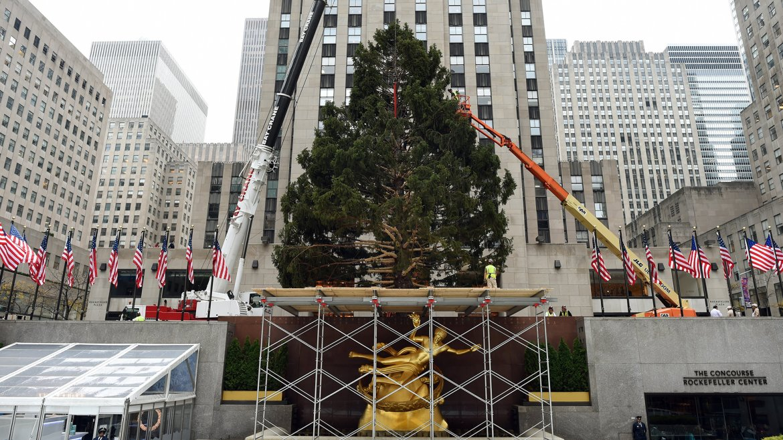 Arbol de Navidad Rockefeller Center 5