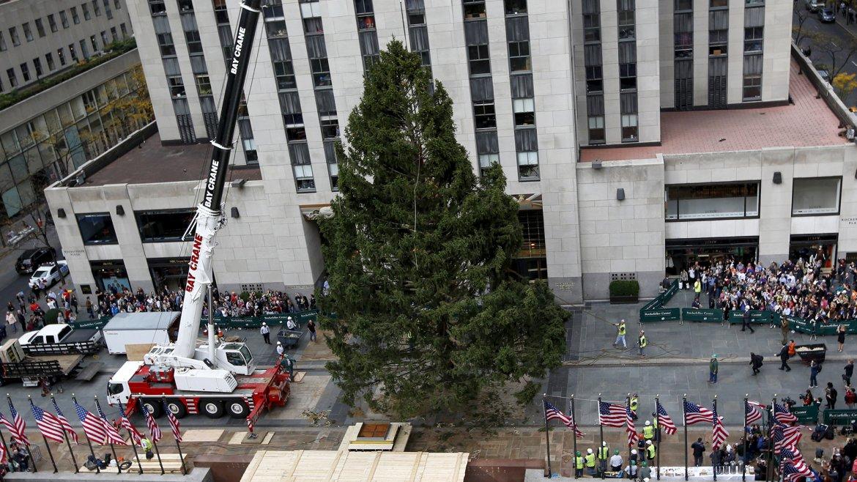 Arbol de Navidad Rockefeller Center 6