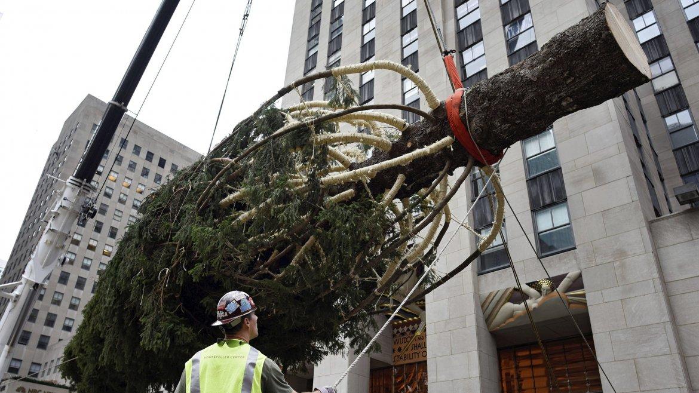 Arbol de Navidad Rockefeller Center 7