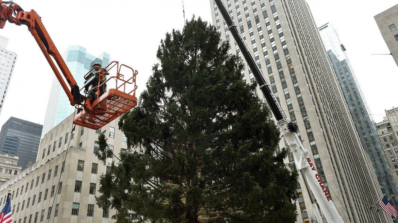 Arbol de Navidad Rockefeller Center 9