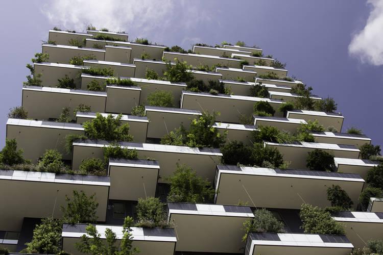 Bosque Vertical Milan 6