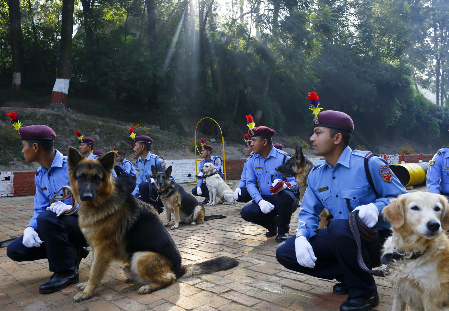 Dog worship day in Nepal