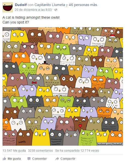 Gato buhos