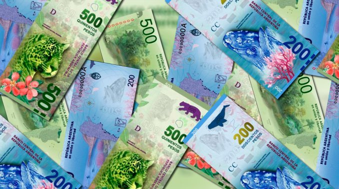 animales billetes