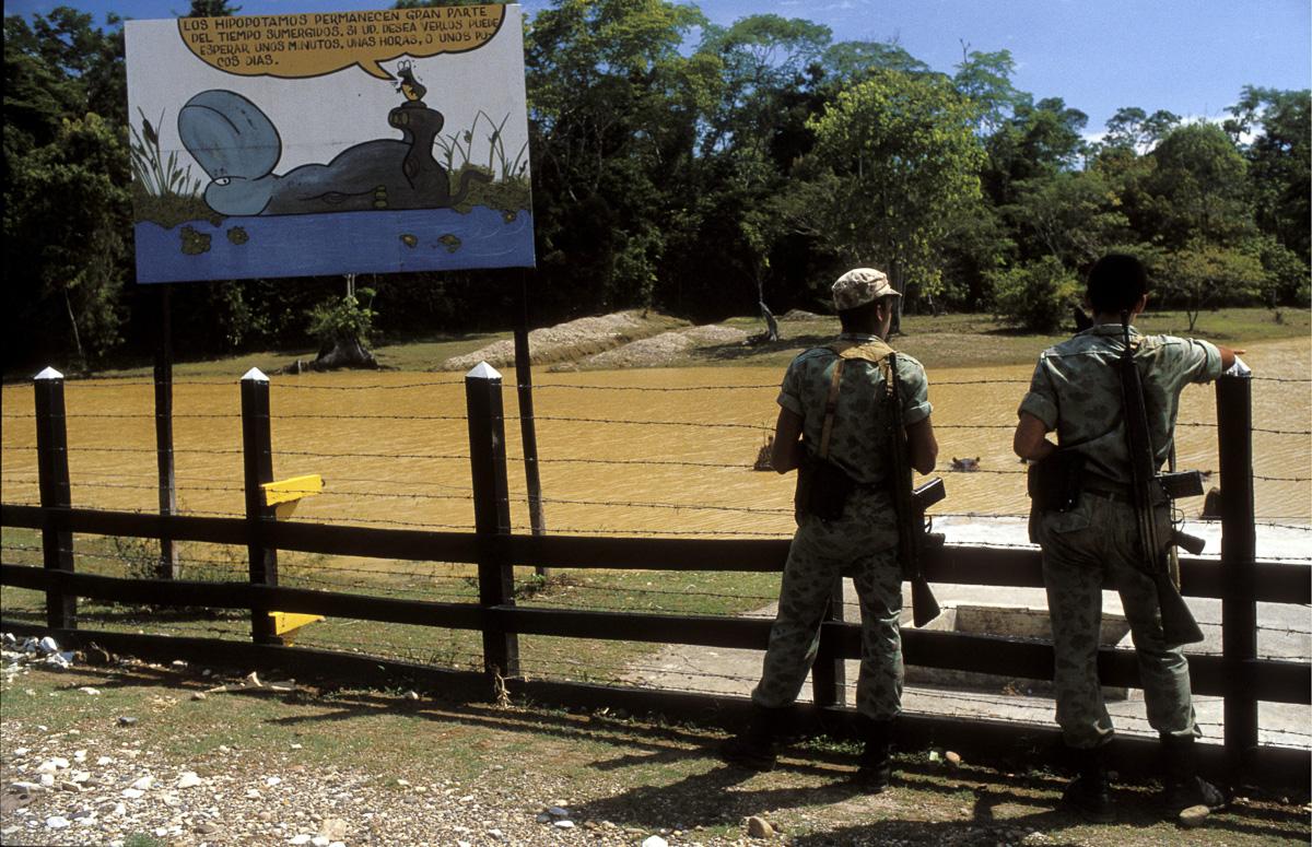 29/08/1989. L'HACIENDA DE PABLO ESCOBAR A MEDELLIN