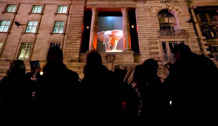 Festival de la Luz Londres 6