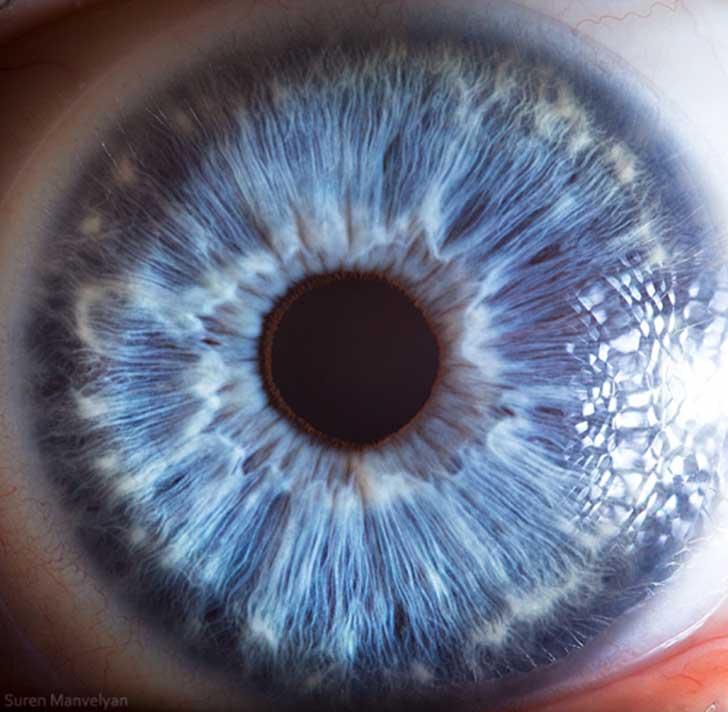 ojos (1)