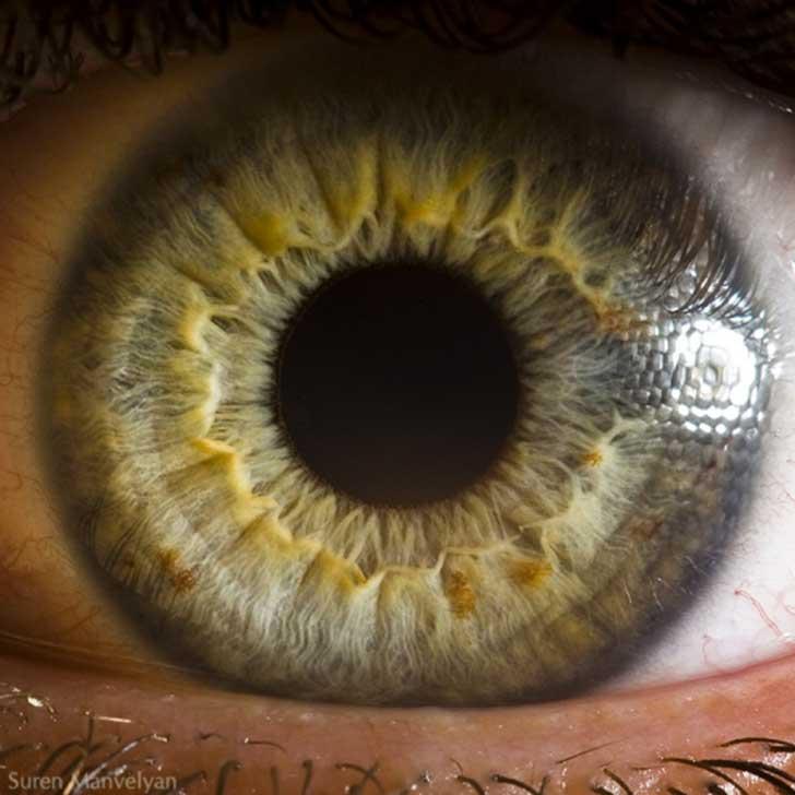 ojos (10)