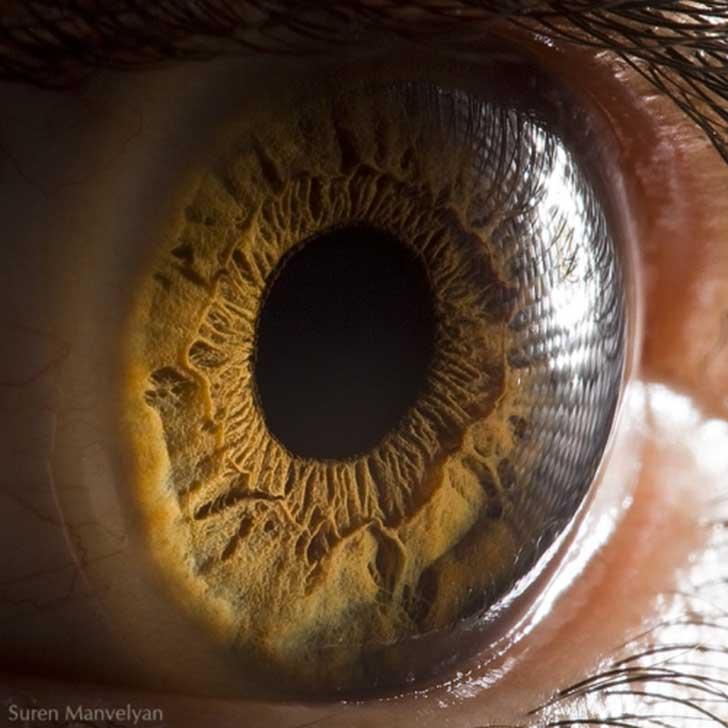 ojos (11)