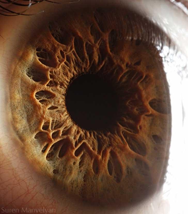 ojos (12)