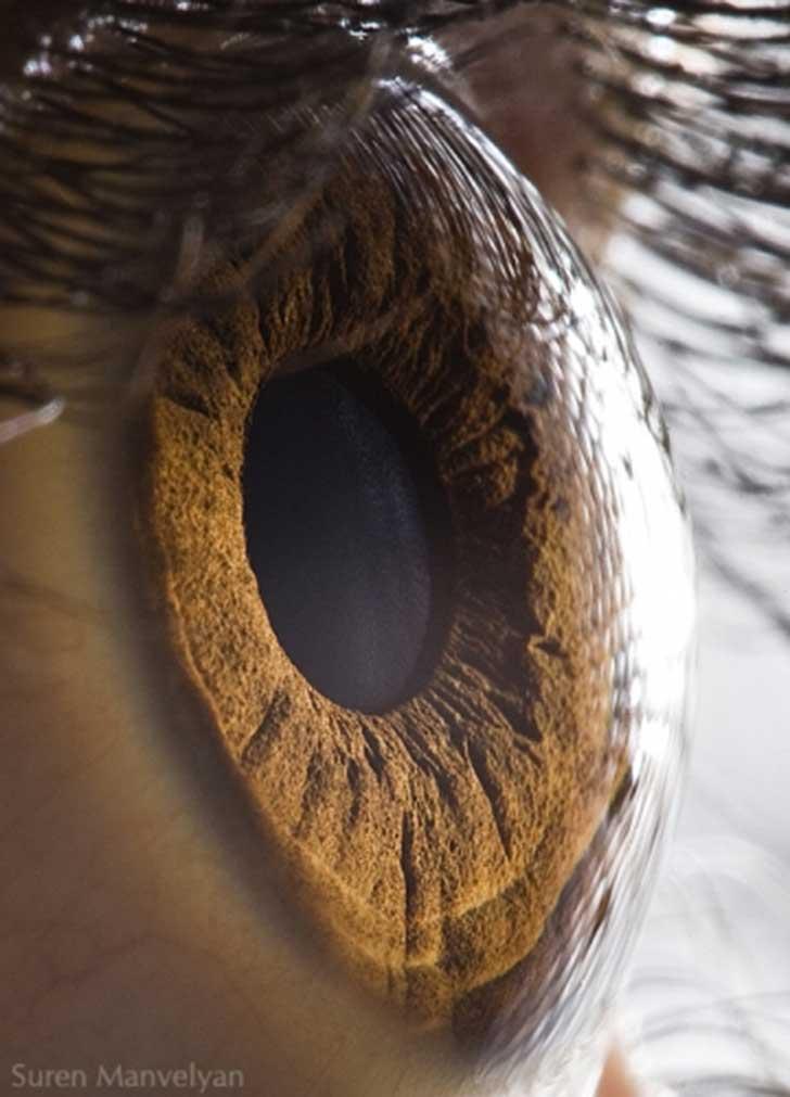 ojos (16)