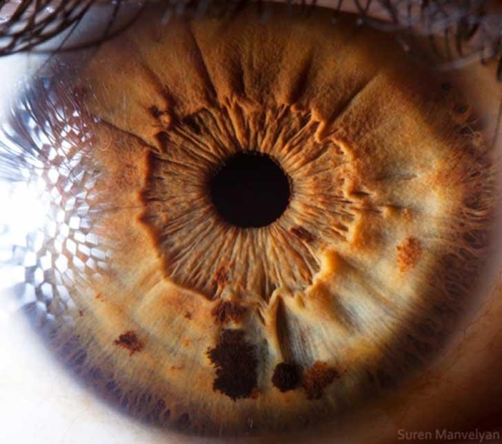 ojos (17)
