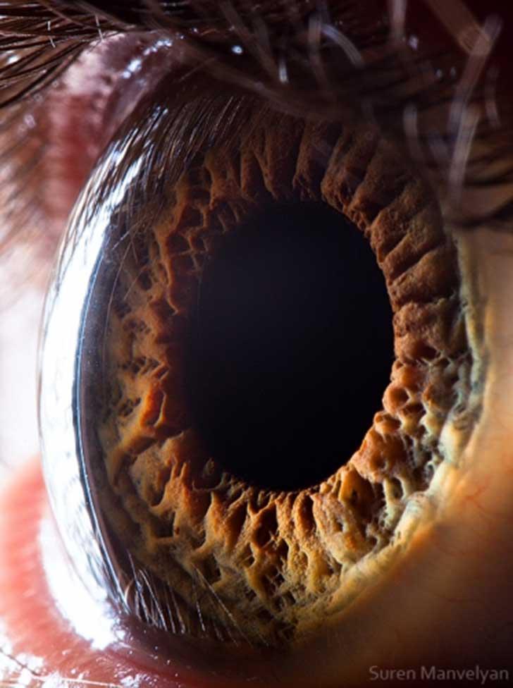 ojos (5)