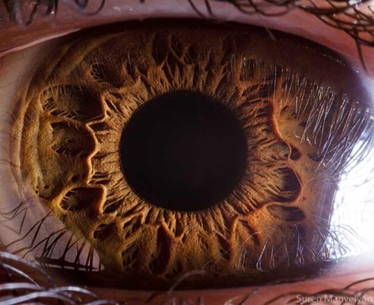 ojos (6)