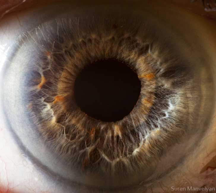 ojos (7)