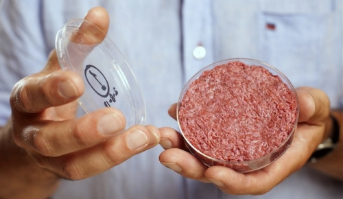 carne-cultivada
