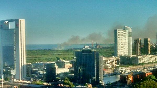 incendio reserva ecologica (1)
